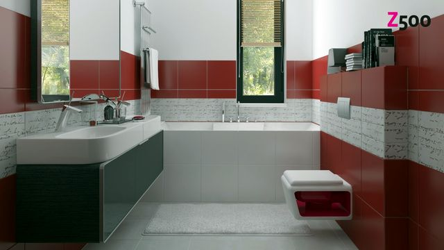 Zx24_Bathroom_001.jpg